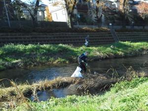 131130-野川の中の清掃風景